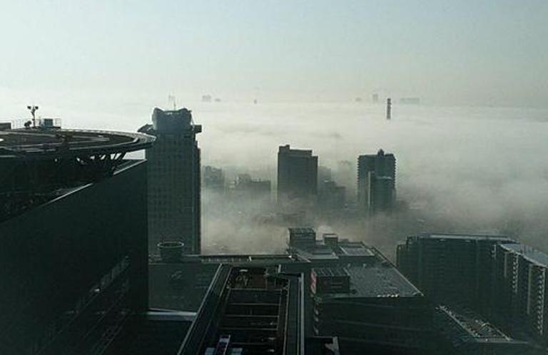 埼玉県で発生した放射霧がスゴイ
