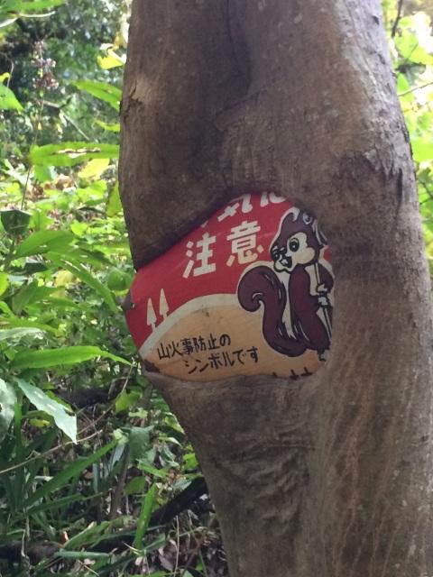 kodam_chinhyakei_2