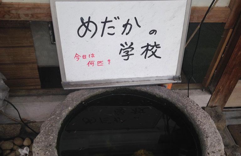 yuma_kounosu_10