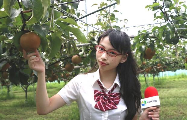 これがマツコが絶賛した埼玉産の梨「彩玉(さいぎょく)」だ!