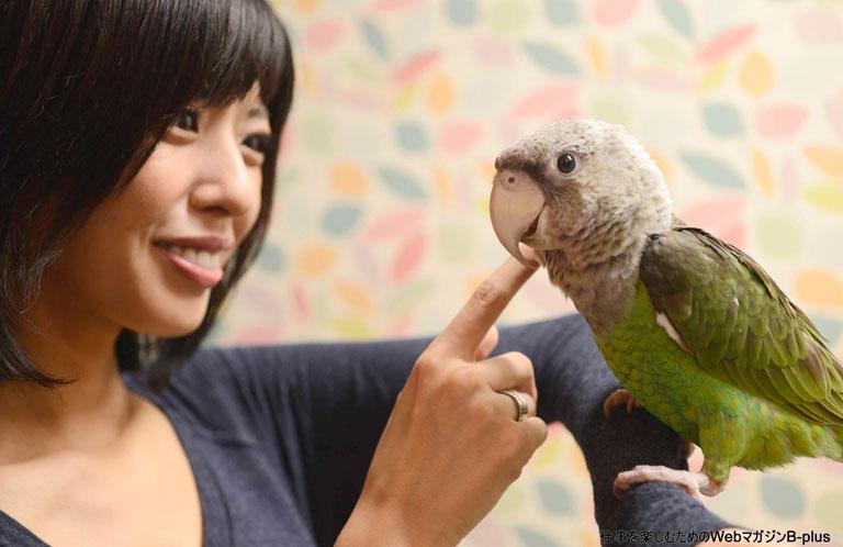日本でここだけ !  オウム、大型インコ専門の鳥カフェが埼玉にOPEN