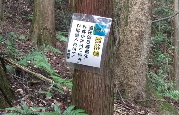 """クマ注意…?標高290m""""埼玉県の富士山""""は想像以上に過酷だった【間野富士山】"""