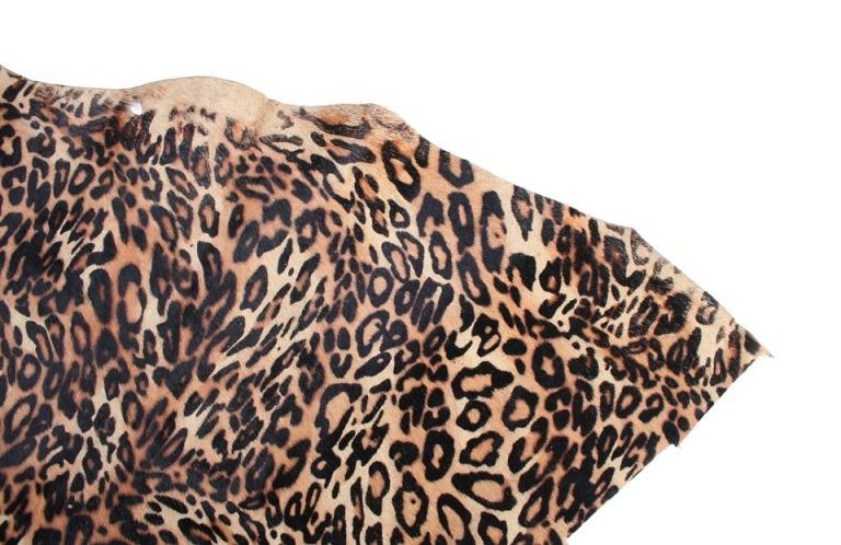 a-leopard-661343_960_720