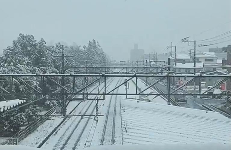 関東で54年ぶりの11月の雪 埼玉県各地でも大雪注意報