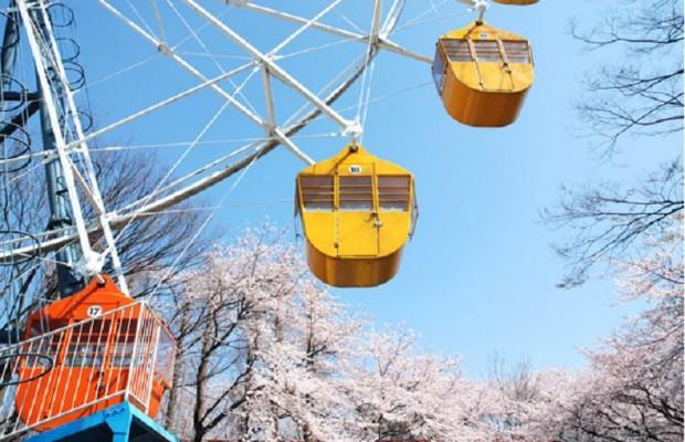 11/14(火)埼玉県民の日に無料になる12施設 2017