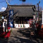 女性たちが集まる鴻巣の人気パワースポット「鴻神社」