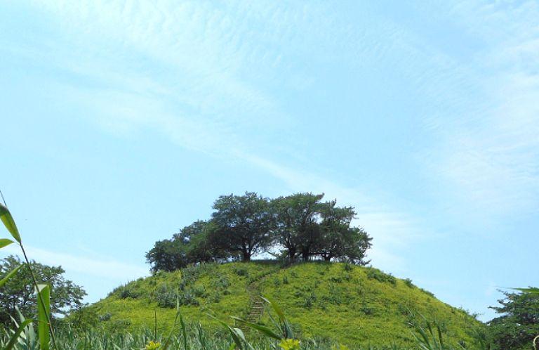 東日本初!行田市の埼玉古墳群が国の特別史跡(=国宝級)に指定されるぞ!
